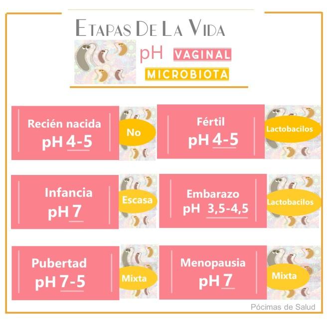 Etapas-vida-ph-vaginal-microbiota