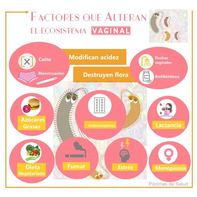 Factores-afectan-ecosistema-vaginal