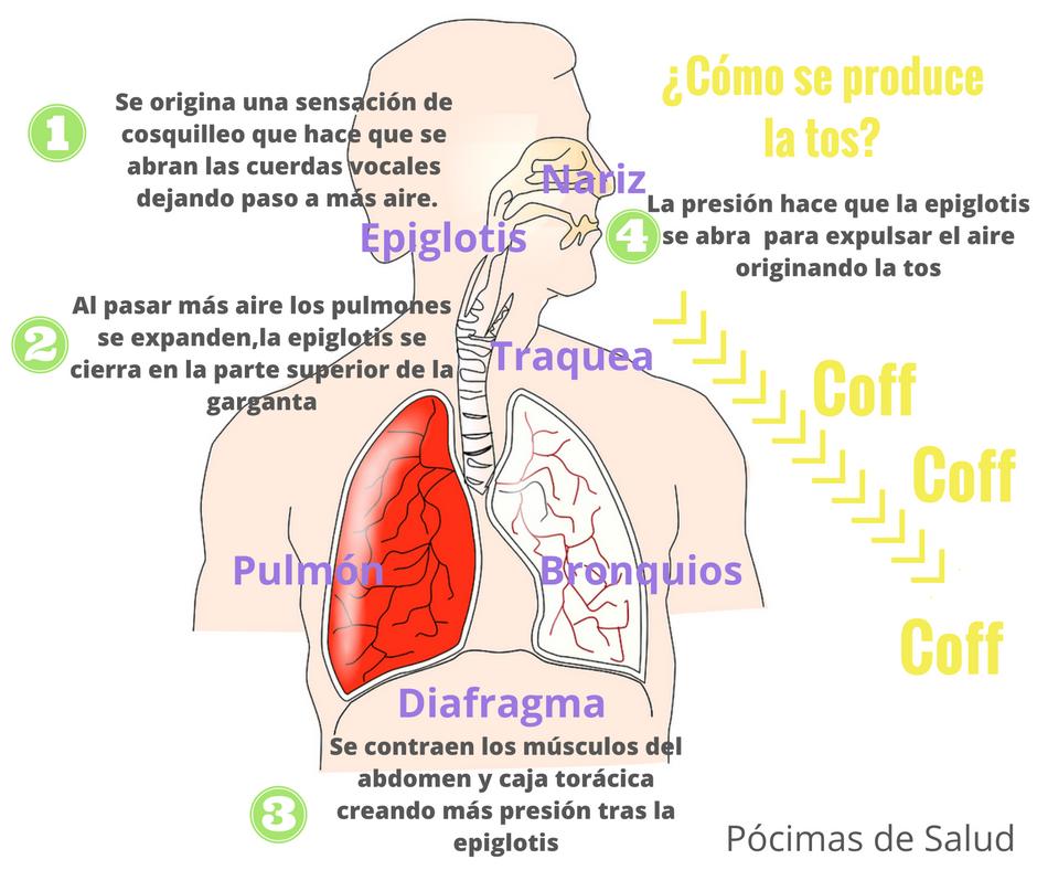 efectos secundarios equipoise boldenone undecylenate