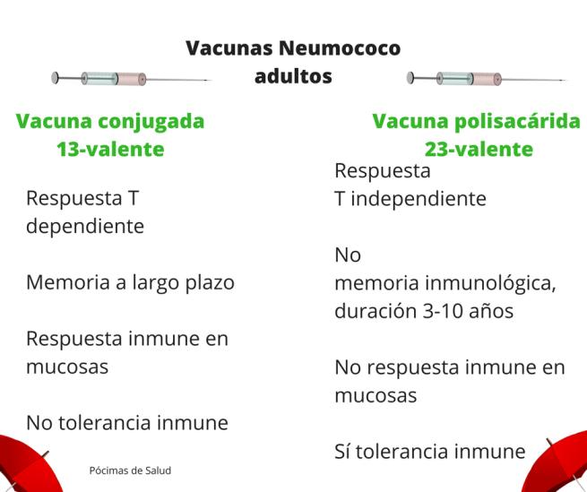 Vacunas Neumococo adultos