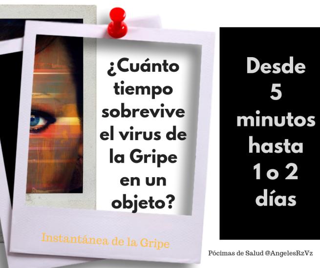Cuánto-tiempo-sobrevive-el-virus-de-la-gripe-en-un-objeto